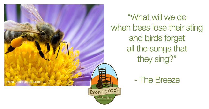 thebreeze-bees